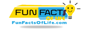 Fun Facts Of Life