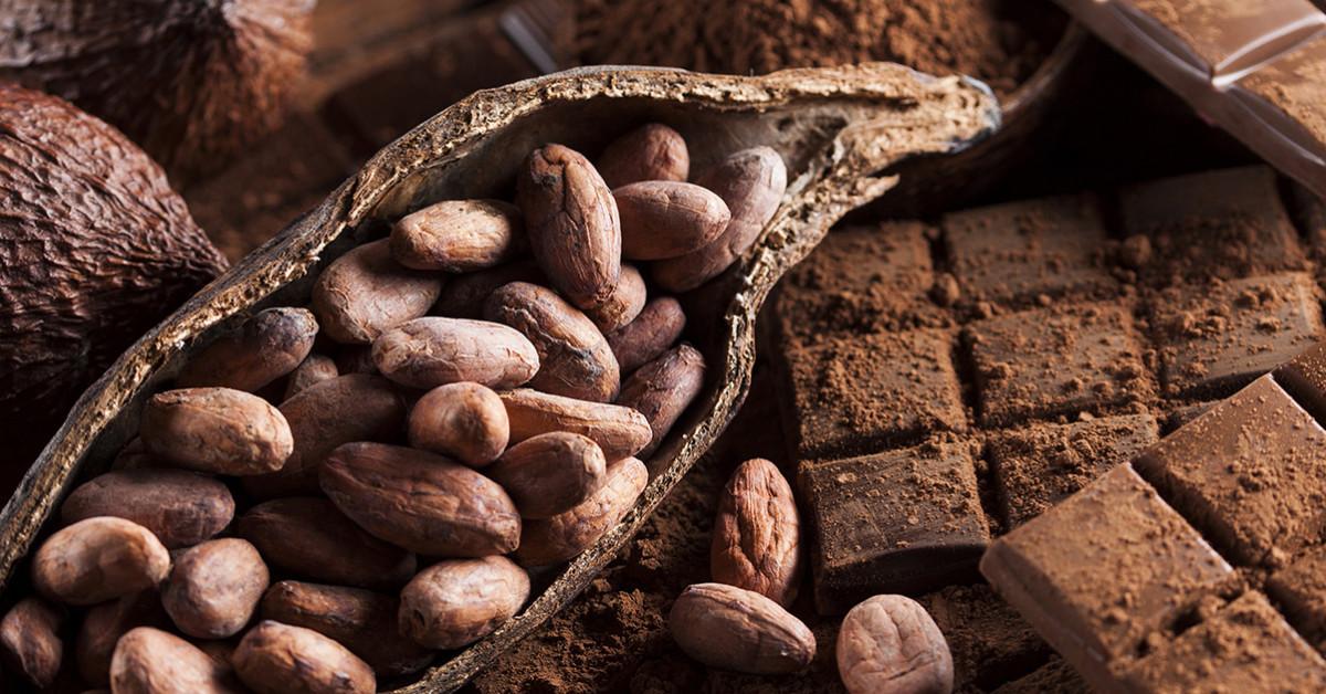 Chocolate: Seduction And Magic