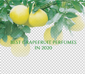 Best Grapefruit Perfumes 2020